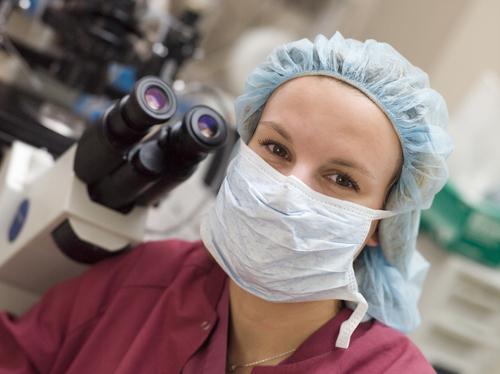 胚盤胞移植 受精